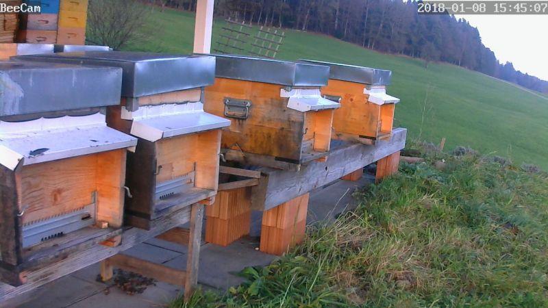 Webcam Friedbergweg